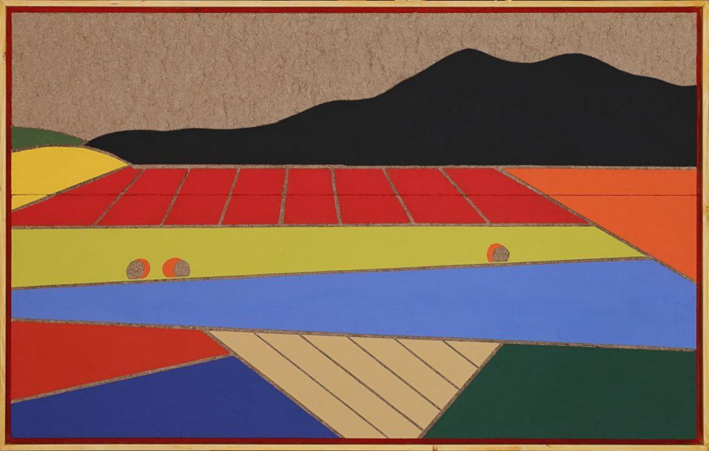 Castelluccio N. 3 - I colori dell'Umbria e campo arato - cm 70x114