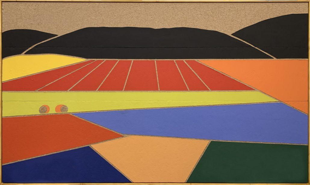 Castelluccio N 2 - I colori dell'Umbria